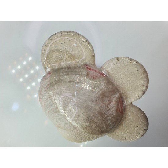 Pigment Pulbere Rasina Epoxidica - Vixen